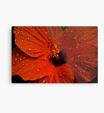 Blur Stamen: On featured work:1.The groups/chrome-mafia Group 2. Creative-talented-and-unknown Group3.Complex-simplicity Group Metal Print