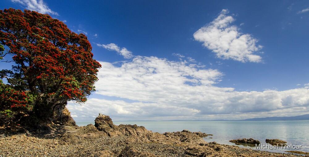 Coromandel Pohutukawa by Michael Treloar