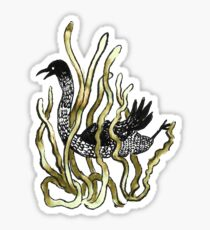 Cormorant Bird Swimming through Seaweed Sticker