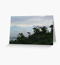 Clump Point - Looking South Greeting Card