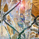 IceDreams by Robyn Bohlen