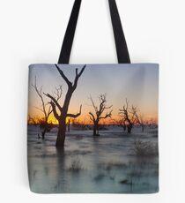 Lake Menindee 002 Tote Bag