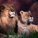 Royal couple by zzsuzsa