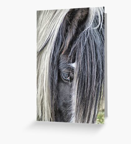 Don't Be Shy Charlie!! Greeting Card