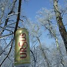 polution with ursus beer can by Cosmin Roszkos
