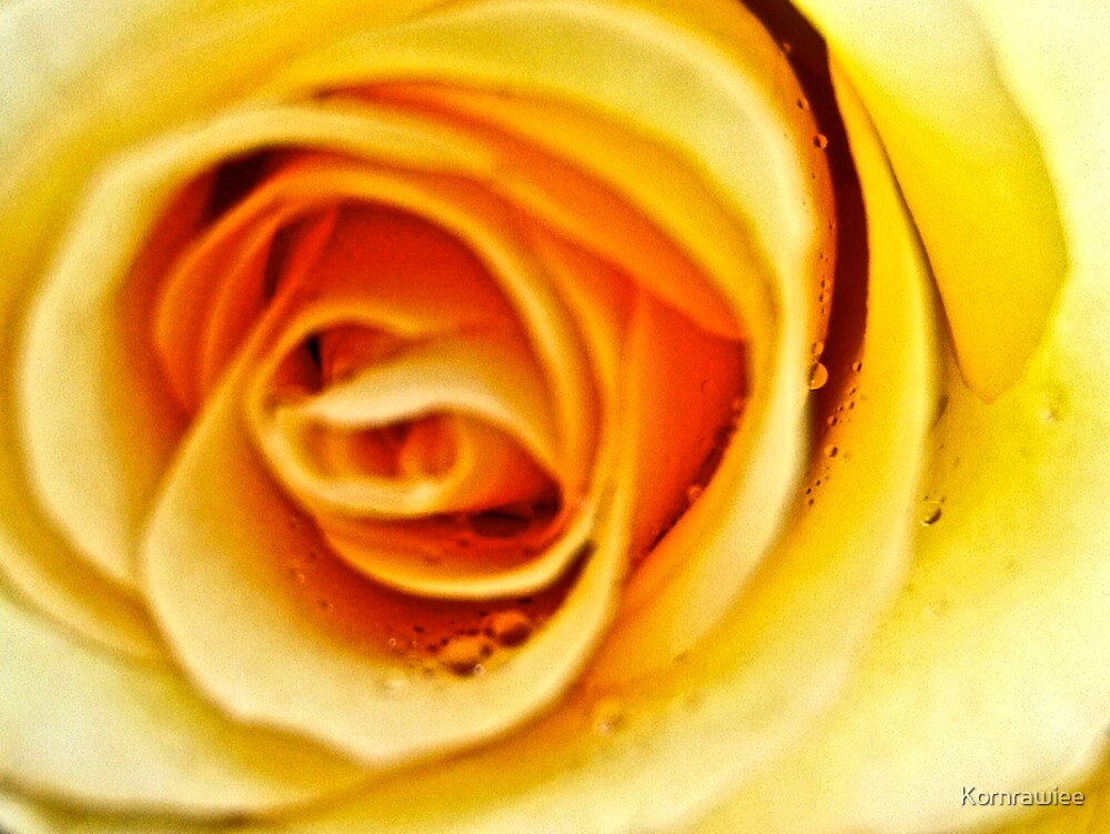 My love is Yellow...also my world still Yellow... by Kornrawiee