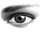 Big Eye by Bob Martin