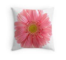 Single Pink Gerbera Throw Pillow