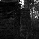 The Dark Side of Orange County III by mojo1160