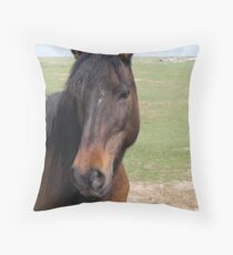 Pretty as a Picture Throw Pillow