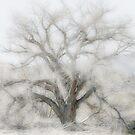 Desert Tree In Soft Oils by CarolM