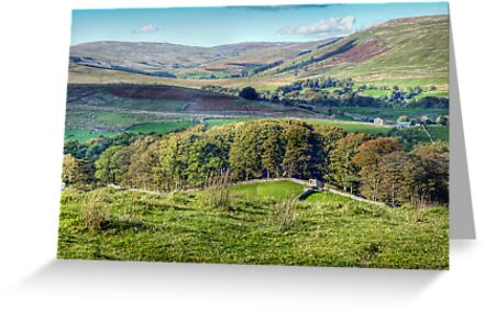 Wensleydale, Near Hawes. by Colin Metcalf
