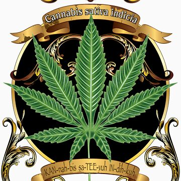 Marijuana cannabis indicia T-Shirt by bear77