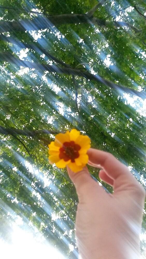 flower ○ by iszebelabee