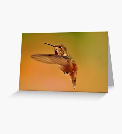 HUMMER IN FLIGHT Greeting Card