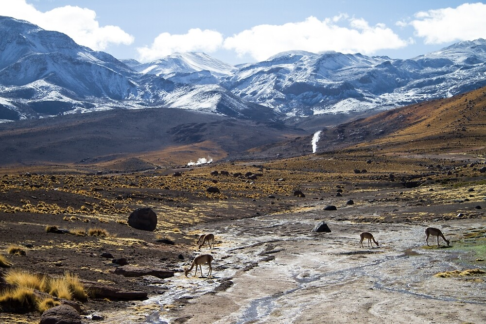 Mountain landscape by DianaC