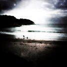 McKenzie's Beach Dreaming by garypoulton