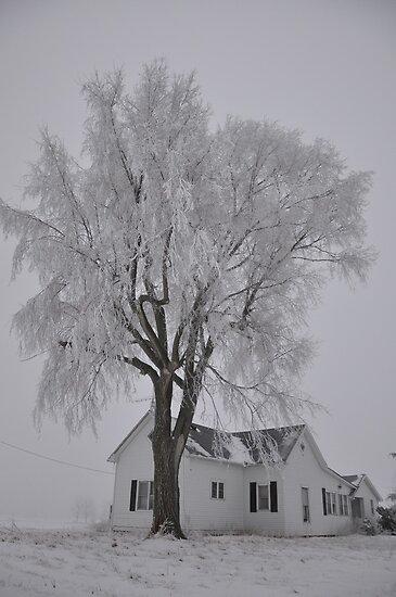 Frozen Sentry by mltrue