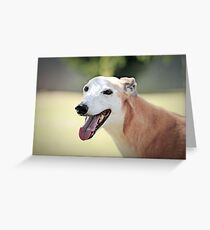 Bubbles - 13 years young Greeting Card