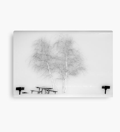 Absence Canvas Print