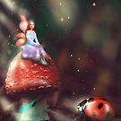 Lady bug fairy princess by MarleyArt123