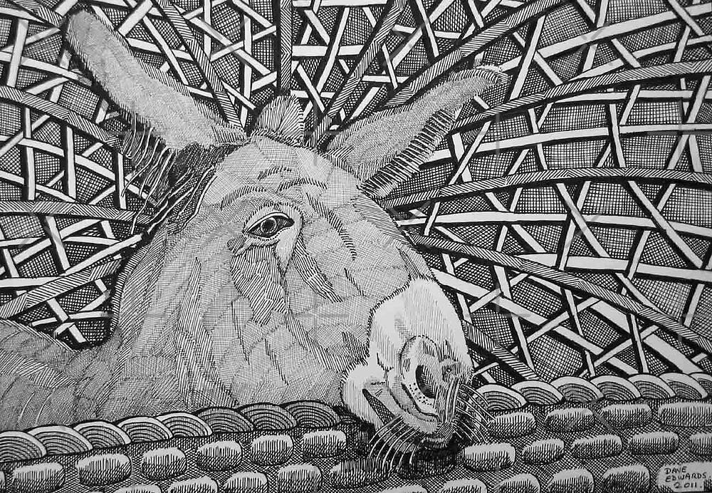 231 - DONKEY DESIGN - DAVE EDWARDS - INK - 2011 by BLYTHART