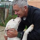 A tribute to Ivo and his on-going work for abandoned dogs. by KanaShow