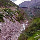 White Pass Yukon trestle by Nancy Richard