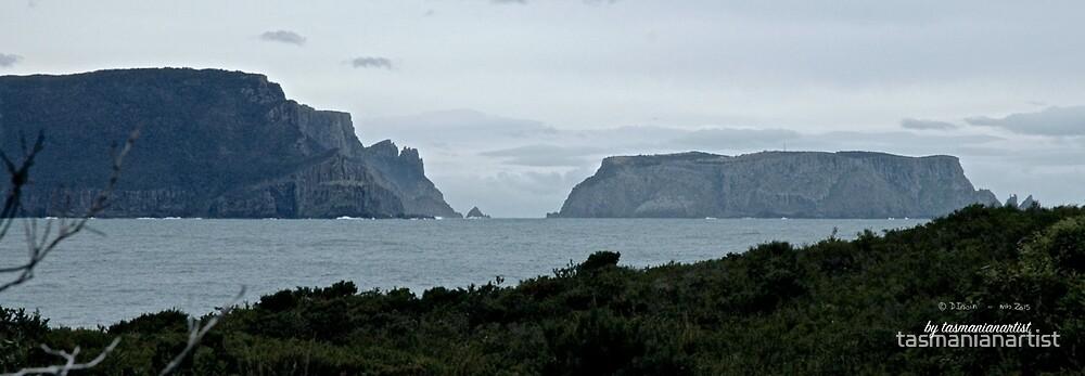 TASMAN PENINSULA ~ Tasman Island, Tasman Passage, Cape Pillar, Black Head by tasmanianartist by tasmanianartist