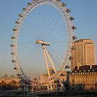 The London Eye at dusk by Stephanie Owen
