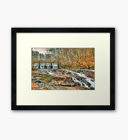 Forest Falls Framed Print