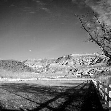 Hurricane Ranch by AquaMarina