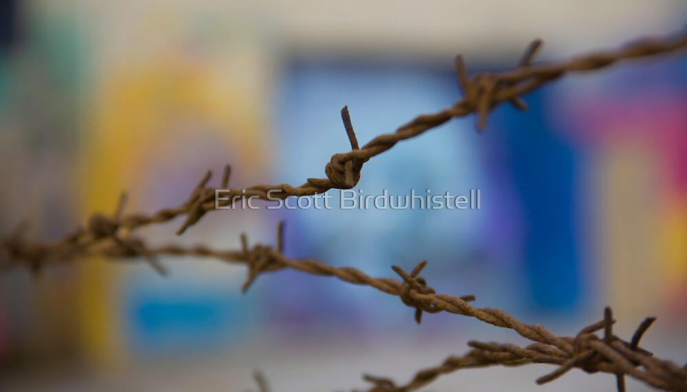 Barbed by Eric Scott Birdwhistell