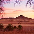 Haystack Mountain - Boulder County Colorado - Sunset Evening by Bo Insogna