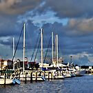 A Day at the Dock by Pat Moore