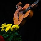 Flores y Musica ♪♫♫♪ by Heather Friedman