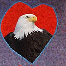 From The Eagle With Love by Linda Miller Gesualdo
