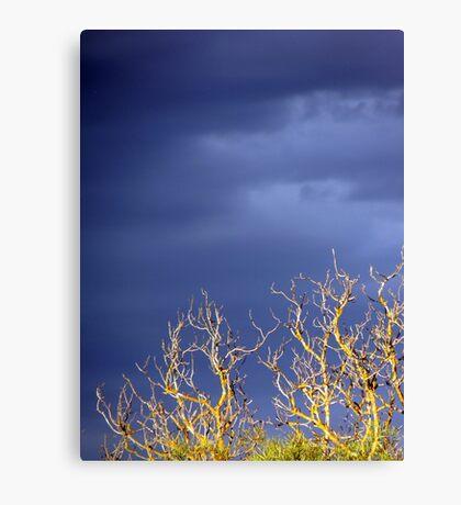 Storm Skies Canvas Print