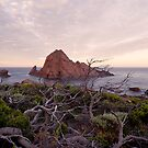 Sugarloaf rock looking warm by Gary Wooldridge