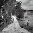 Mystery at the End of a Bavarian Road B&W by Adam Olson