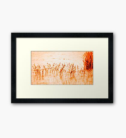 flame dance Framed Print