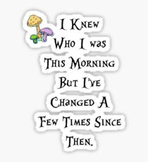 I knew who I was this morning Sticker