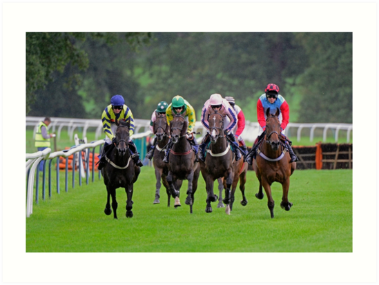 Horse Racing by emergentdesigns