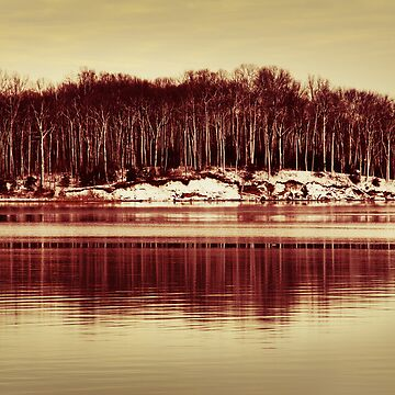 At Quiet Waters by danadipasquale