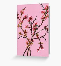 Cherry Blossoms from Amphai Greeting Card