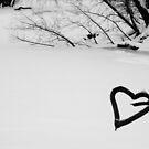 A heart made of wood by DearMsWildOne