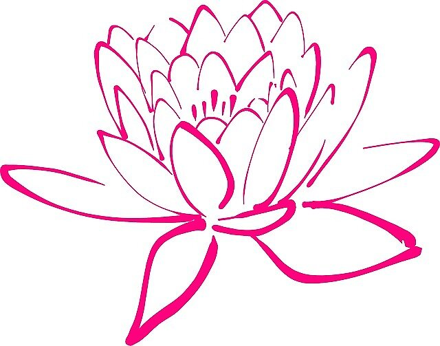 Pink Lotus Flower by JillianR95