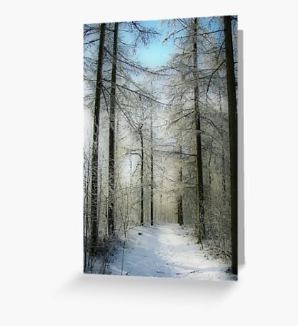 A Path in the Snow Greeting Card