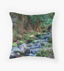 Sherbrooke Creek, Dandenong Ranges National Park Throw Pillow