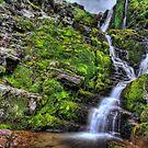 Swinnergill Waterfall by Guy Carpenter